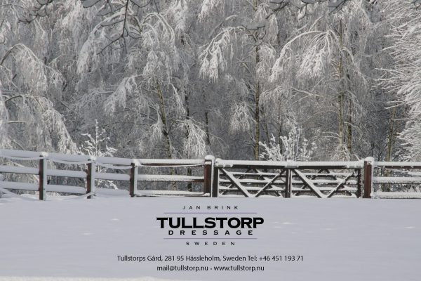 Merry Christmas from Tullstorp